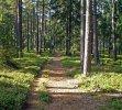 hřebenová cesta u Sádky