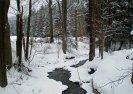 Padrťský potok u zámečku