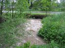 Bílý potok v Míšově 06/2013